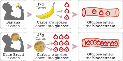 Diagram showing how carbohydrates are broken down to glucose