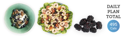 yoghurt with blueberries and pecans + prawn salad + blackberries = 495 cals